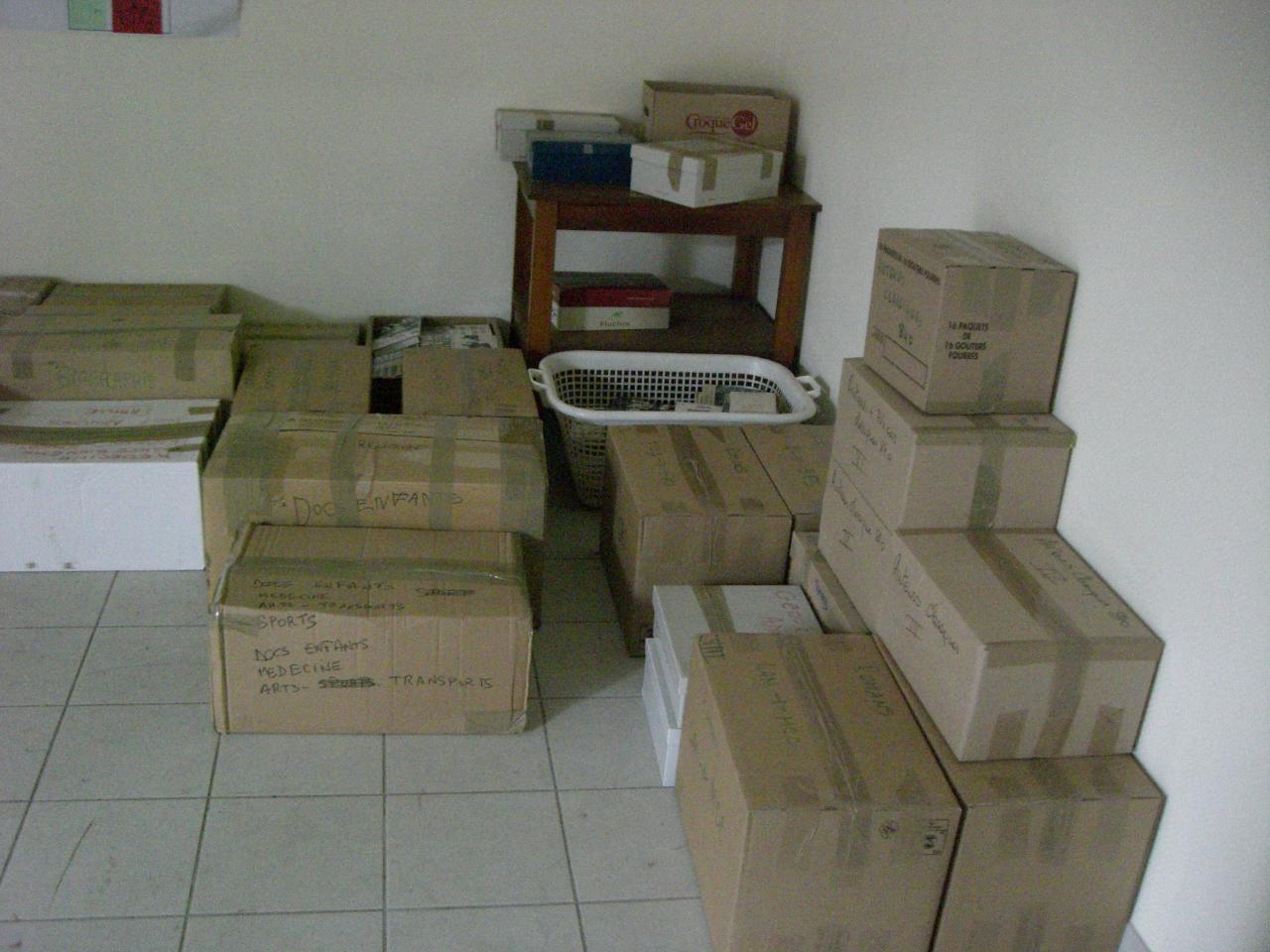 2009.03 le 17 déménagt de la bib (6)